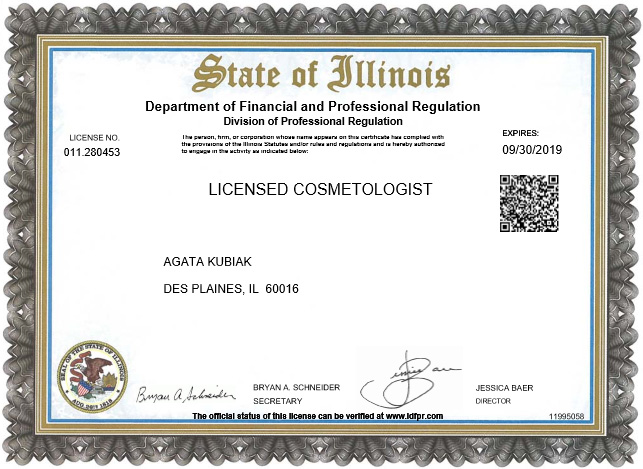 State of Illinois License - Licensed Cosmetologist